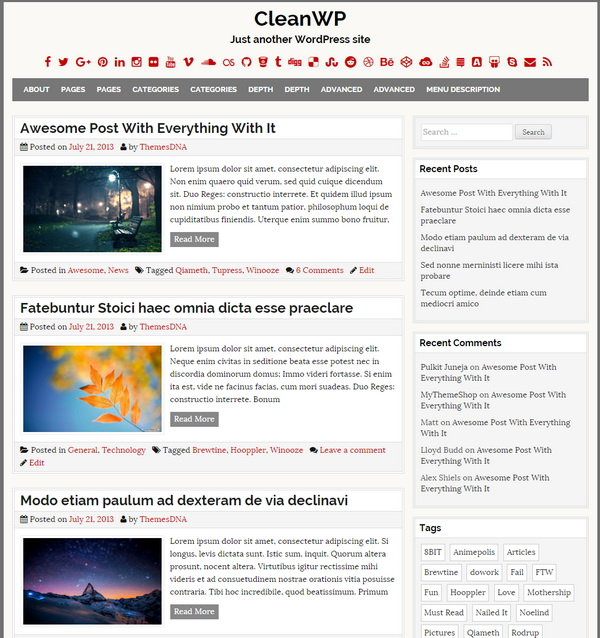 CleanWP WP Theme