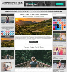 EasyWP PRO WordPress Template
