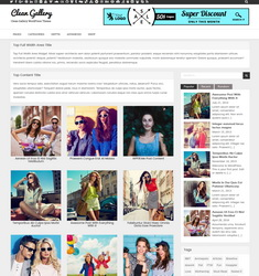 Clean Gallery WordPress Theme